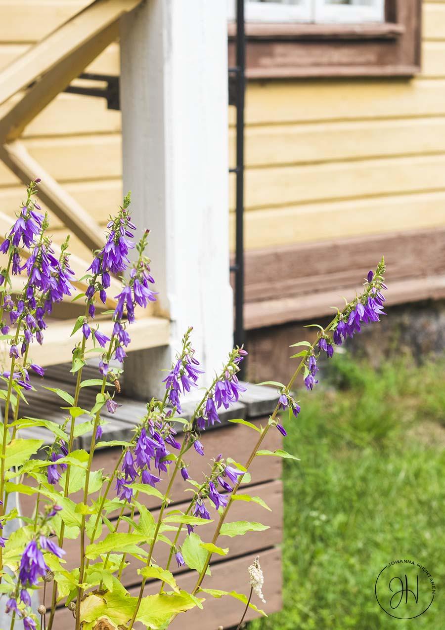 Artjärvi Päälliköntalo kukat